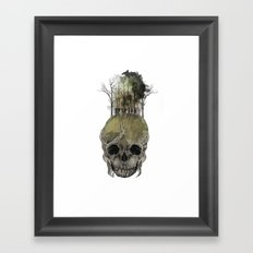 Lost Woods Framed Art Print