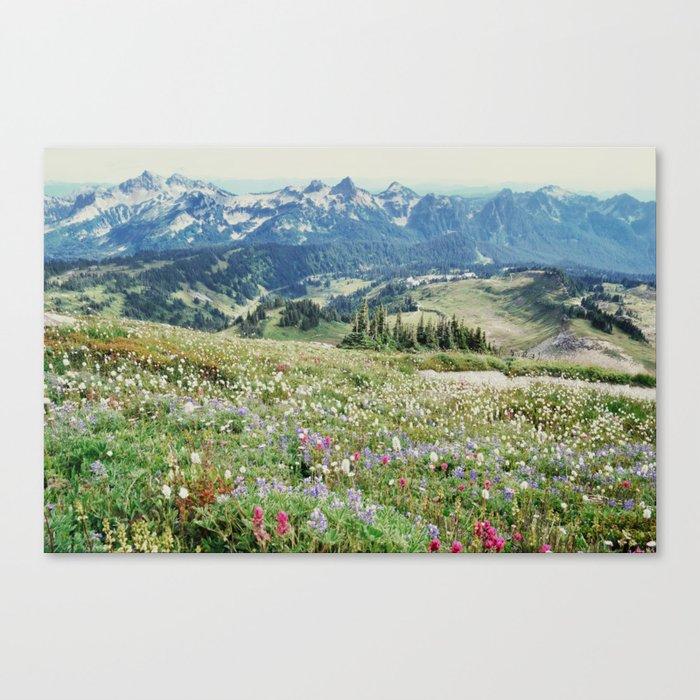 Wildflower Meadow Leinwanddruck