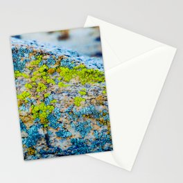Hyper Lichen on Cool Desert Rock Stationery Cards