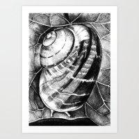 snail Art Prints featuring Snail by MARIA BOZINA - PRINT