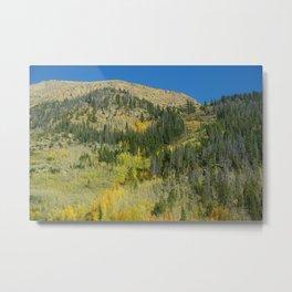 Colorado Metal Print