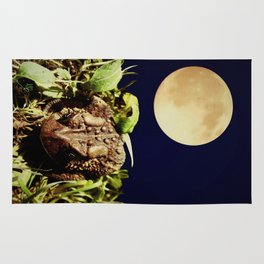 The Toad's Moon Rug