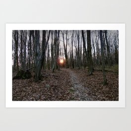 Turn Right at the Setting Winter Sun Art Print
