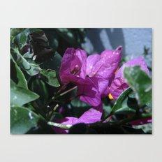 Flowers #8 Canvas Print