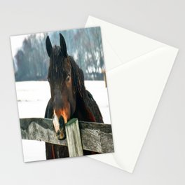 Thoughtful Horse Stationery Cards