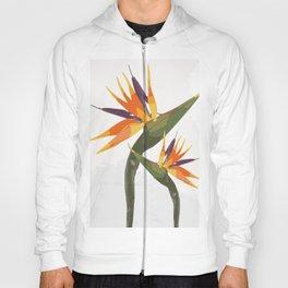 Paradise Flower Hoody
