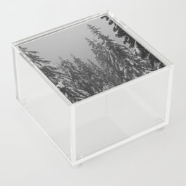 Snow Trees Acrylic Box