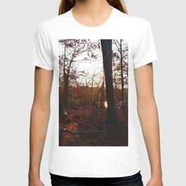 Golden Forest T-shirt