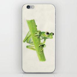 Glass Frog on leaf stem iPhone Skin