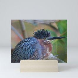The Green Heron at Ding III Mini Art Print