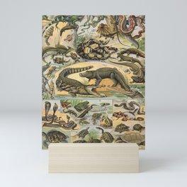 Reptile Illustration - Larousse Mini Art Print