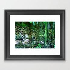 amur leopard Framed Art Print