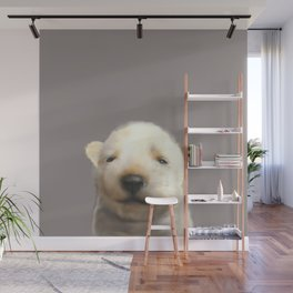 Jindo puppy runny nose Wall Mural