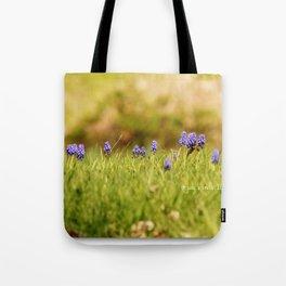 Mini Landscape of the Pretty Purple Hyacinths ~ & a bee Tote Bag