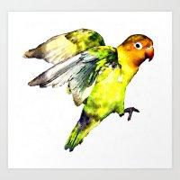 parrot Art Prints featuring Parrot by cmphotography