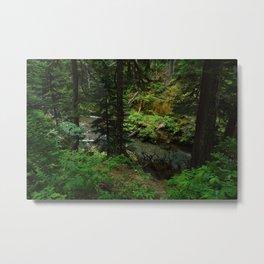 Forest Veins Metal Print