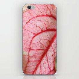 Caladium iPhone Skin
