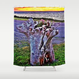 Saturated Driftwood Shower Curtain