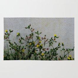 Minimal flora - yellow daisies wild flowers Rug