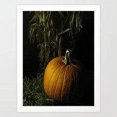 Pumpkin, Pumpkin Big And Round Art Print