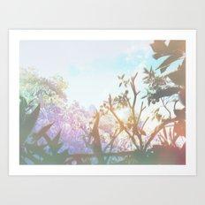 Living in the Sun Art Print