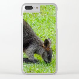 Swamp Wallaby Clear iPhone Case