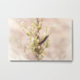 Spring Caterpillar Metal Print