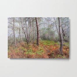 Dream foggy sunrise. Sierra De Cazorla Natural Park Metal Print