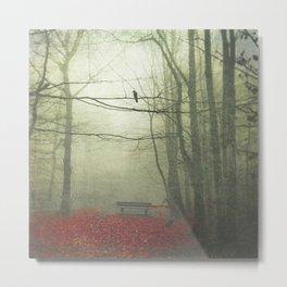 hazy autumn morning Metal Print