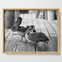 Juvenile Brown Pelican Tale 6 Serving Tray
