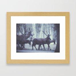 Rambouillet Forest III Framed Art Print