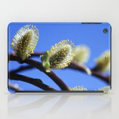 Willow Catkins iPad Case