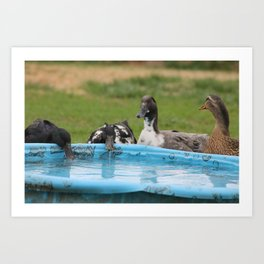 Chit Chat at the Watering Hole Art Print