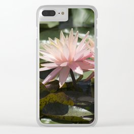 Longwood Gardens - Spring Series 304 Clear iPhone Case