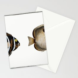 1 Chaetodon unimaculatus 2 Arc-Fish (Chaetodon arcuatus) from Ichtylogie ou Histoire naturelle gener Stationery Cards