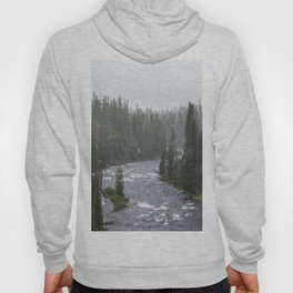 Yellowstone Forest - Nature Photography Hoody