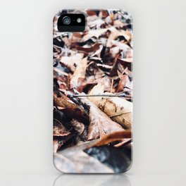 Each One For A Good Year iPhone Case