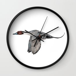 Northern Pintail Wall Clock