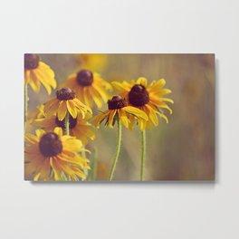 Yellow Hat Coneflowers Summer Botanical Metal Print