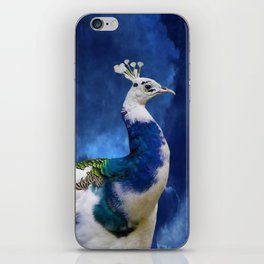 Peacock and Blue Sky iPhone Skin