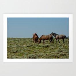 Wyoming Wild_Horses - I Art Print
