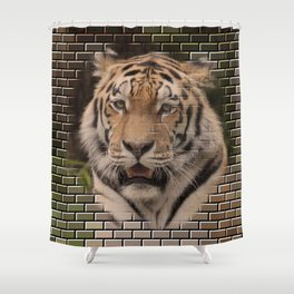 Animal on Bricks, TIGER Shower Curtain