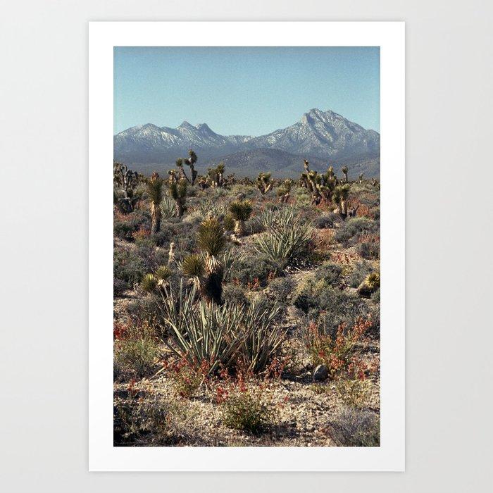 Cold Creek, Nevada Kunstdrucke