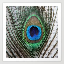 Peacock Feather on Old Paper  Art Print