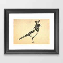 Hello Mister Magpie Framed Art Print
