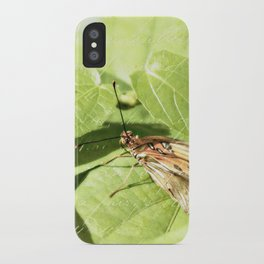 Inquisitive iPhone Case