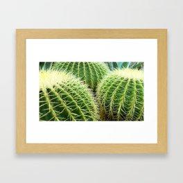 Prickly Bunch Framed Art Print