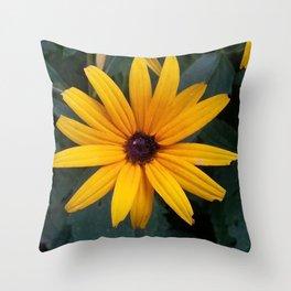 Black Eyed Susan 4 Throw Pillow