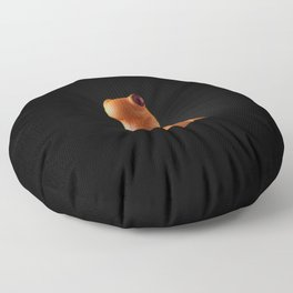 Stig Floor Pillow