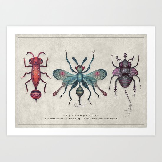 The Hymenoptera Art Print